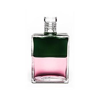 Equilibrium B021 Groen / Roze 50ml 'Een nieuw begin voor liefde'